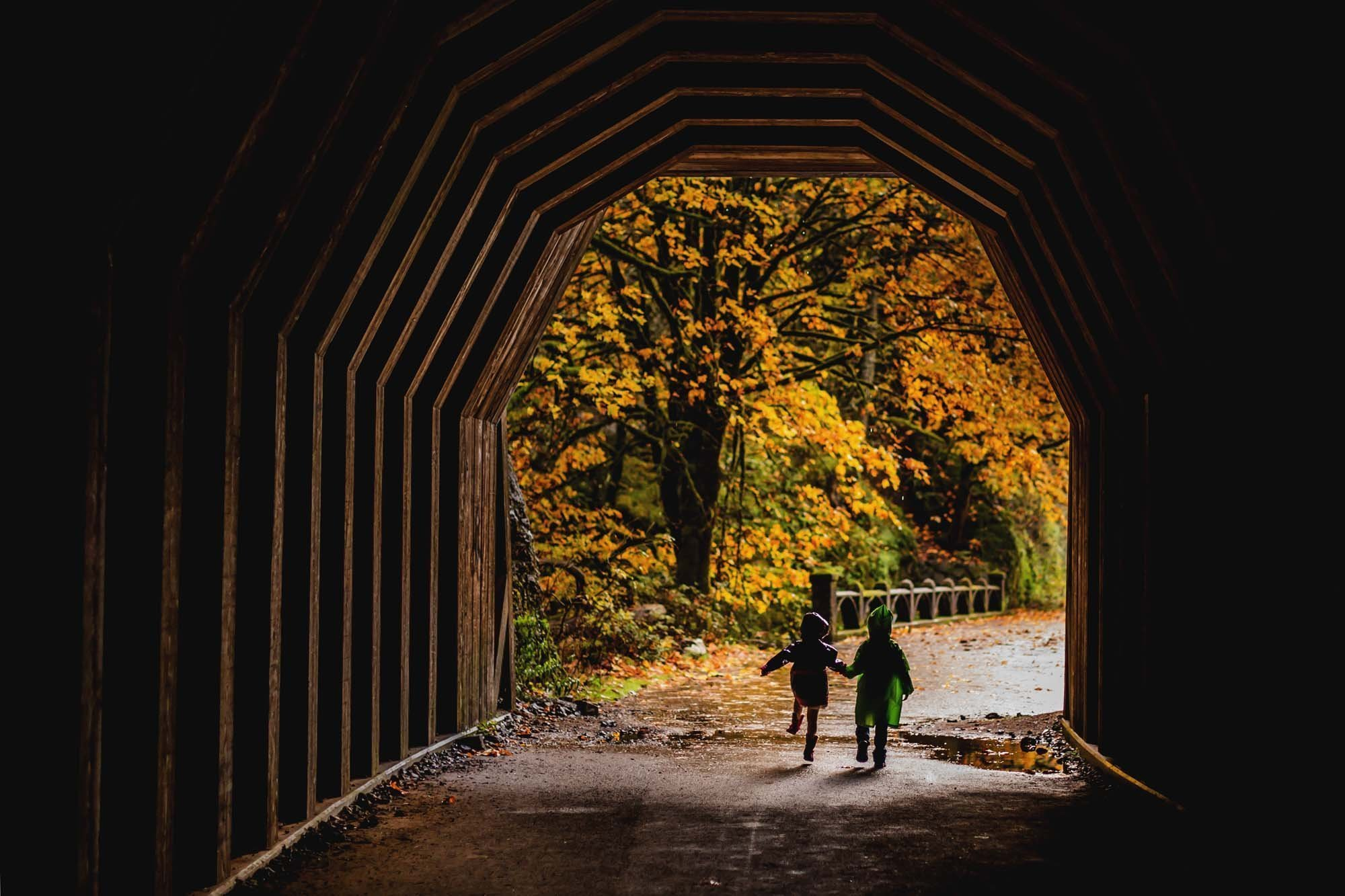 Oneonta Falls Tunnel in the fall
